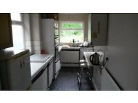 Single Box room in shared house in London Central line near Hainault or Fairlop