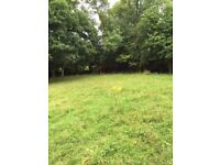 3.5 Acres Available for up to three horses