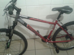 Norco Bush Pilot mountain bike