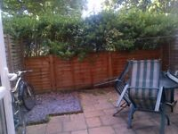 Hammersmith Twin Room Share for 1 Person Available