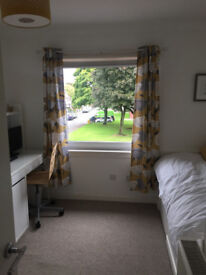Single room in clean friendly home. own tv, wifi. Parking. Close to college, sse, bus stop,bypass