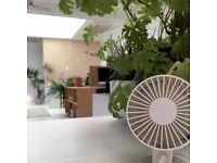 Desk Spaces in Spacious Studio - Central North Laine, Brighton