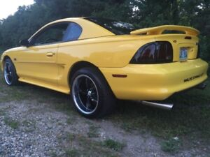 Montserously appealing!! One OWNER rare 1994 SNS MUSTANG