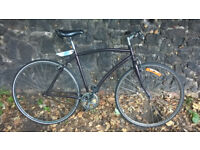Alloy Custom 21in Single Speed Road Bike in Working Order
