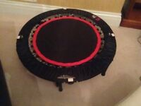 URBAN REBOUNDING mini-trampoline and exercise ball