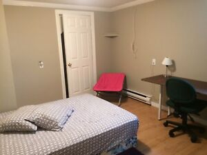 Fully furnished and everything included room available