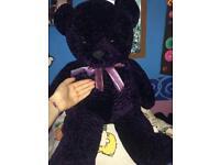 Purple large teddy
