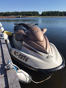 Sea-Doo- HOURS OF WATER FUN!! Trailer and Cover Included