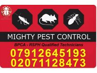 Pest Control Services Extermination Bedbugs|Cockroaches|Mice|in Docklands|Redbridge|Dagenham|Romford