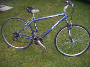 CCM Avenue Road bike for sale