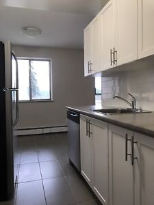 Beautiful Newly Renovated 1 bed suite (Great location!)