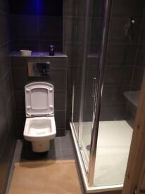 Professional bathroom and kitchen fitting