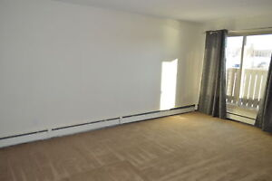 A must see! Cozy Fireplace, Bright & Spacious One Bedroom Apt!