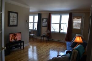 Looking for a new roommate to share the apartment