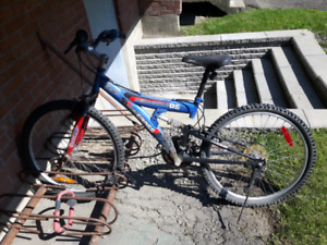 Boy's mountain bike $20