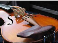 Beautiful figured Maple Violin 4/4