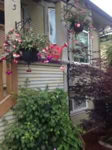 Heart of Town Child and Pet Friendly Short Term Rental