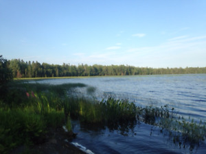 For Sale 32.8 acres located on large lake $99,000 (Lisa MacEwen)