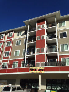 Why pay rent? 3 Bdrms, 2 Bths in Dallas