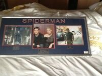 Signed by characters of Spider-Man movie Toby Maguire/Kirsten Dunst/James Franco/Sandman