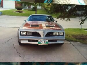 Looking for 78 trans am