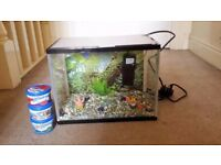 Aquarium ,Fish tank with filter,Patrick and Mr.Krabs ornament