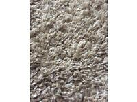 Large light beige rug