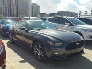 2017 Ford Mustang Ecoboost Coupe (2 door)