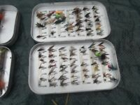 BOXES OF FLYS