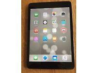 iPad Mini Wifi 16GB Black/ Slate Grey