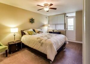 Fairview Towers - 3 Bedroom Deluxe Apartment for Rent Kitchener / Waterloo Kitchener Area image 3