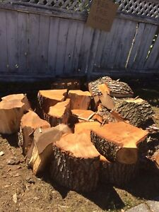 Free firewood in Burnaby!!