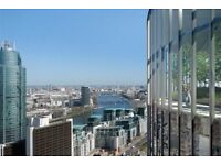 AMAZING 1B WITH PRIVATE WINTER GARDEN WITH VIEWS OF SKY GARDENS, WANDSWORTH ROAD, VAUXHALL DF226