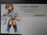 A Class Cleaner I am reliable, trust worthy and key holder .