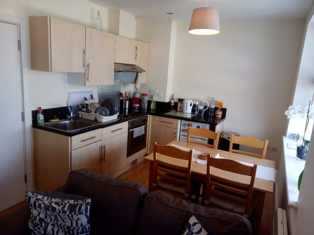 1 Bedroom flat in Reading town centre £870 per month Pets accepted