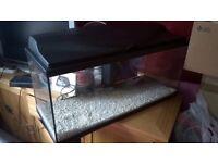 Fish tank. 3ft.