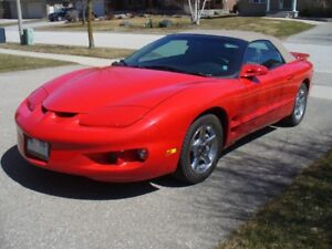 1999 Firebird Convertible for sale
