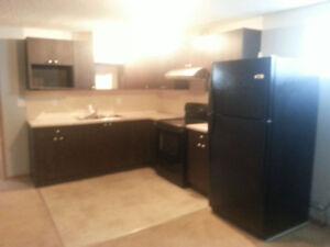 Basement Suite for rent in Saddleridge