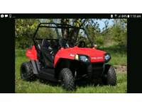 Polaris rzr 170 off road buggy utv quad bike