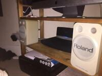 Roland speakers aux cable