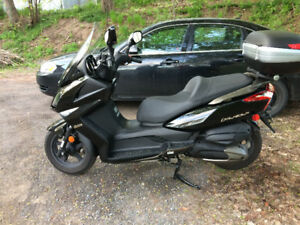 Great Scooter at a Great Price