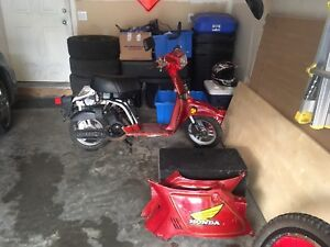 Scooter old Honda!