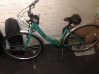 Cafe apollo bike