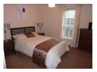 SPACIOUS DOUBLE ROOM TO RENT IN MODERN HAYMARKET FLAT