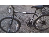 ADULT M/BIKES AND HYBRID TOWN BIKE 4 OFF ALL £35 EACH CAN DELIVER
