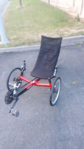 Recumbent Trike in need of good home