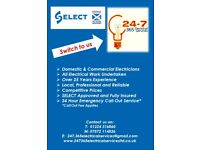 LOCAL PROFESSIONAL ELECTRICIANS