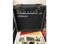 C Giant M-20 Amplifier