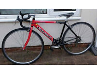 Bargain Price Small Falcon Lightweight Peloton Road bike, LikeNew 19 inches , 48 CM. suit 5' to 5'6