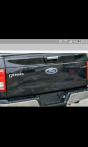 2015 Ford f150 tailgate with backup cam
